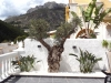Location-altea-terrasse-olivier-montagne
